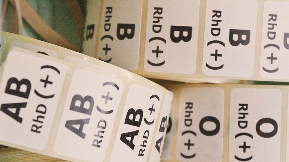 We all know we have a blood type, but what we don't know is exactly why we have them in the first place. (Science Photo Library)