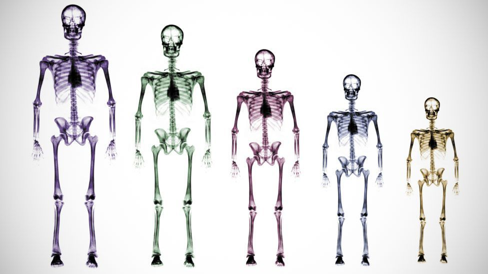 Smaller humans would have less impact on the planet (Getty Images)