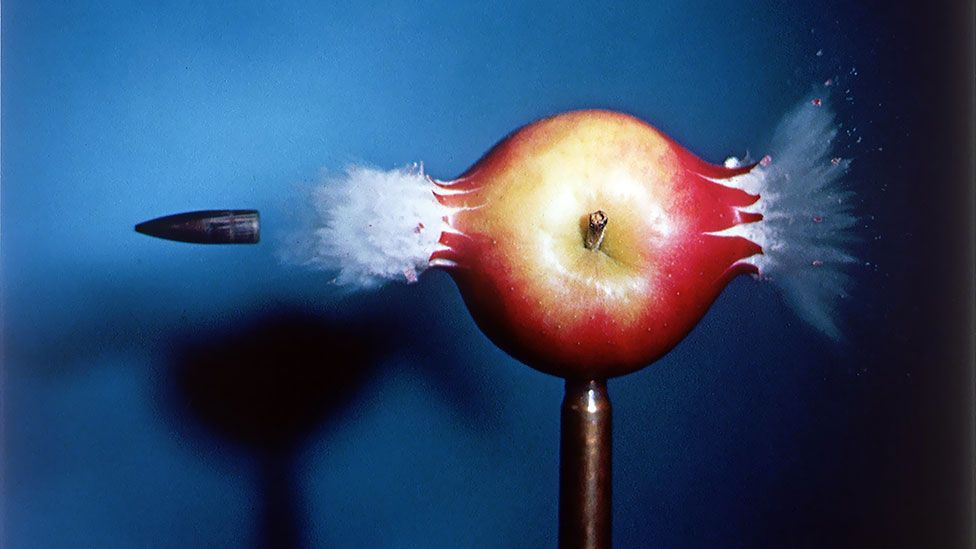 Harold Edgerton's knack for invention created the electronic flash - allowing even the incredible speed of a bullet to be frozen in place. (Harold Edgerton Archive, MIT)