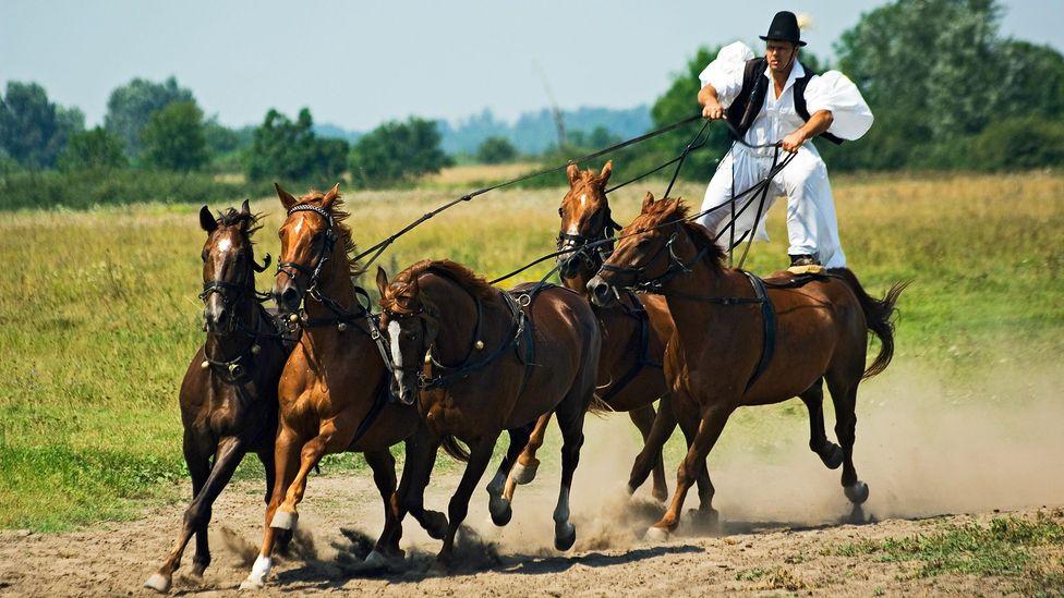 Hortobágy National Park, Hungary, Great Hungarian Plain