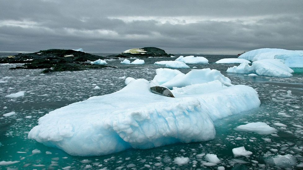 Antarctica, how I quit my job