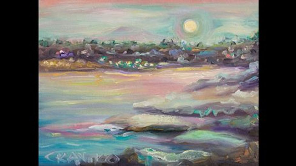 "Antico's vision is particularly enhanced at night, as seen in ""Shiny moon in La Jolla"" (Concetta Antico)"