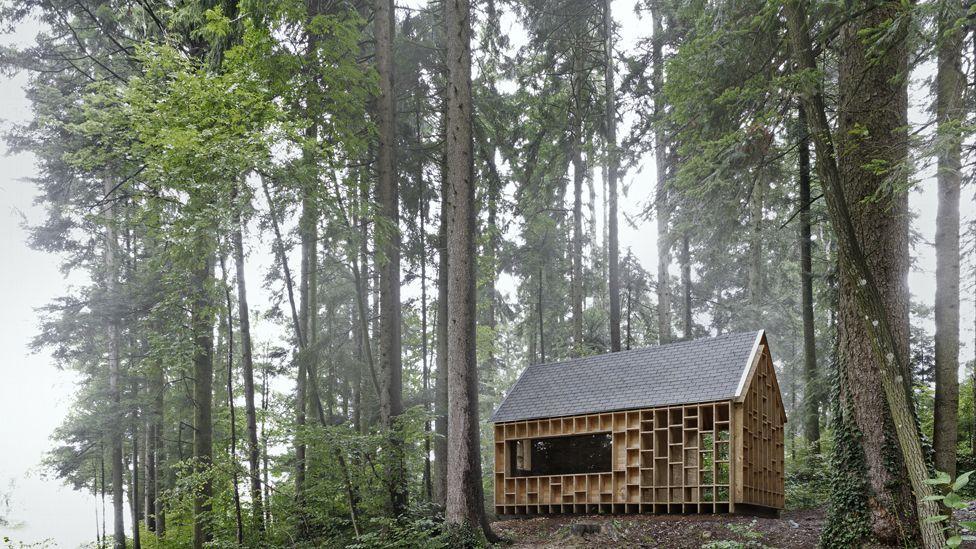 Waldsetzkasten in Vorarlberg, Austria