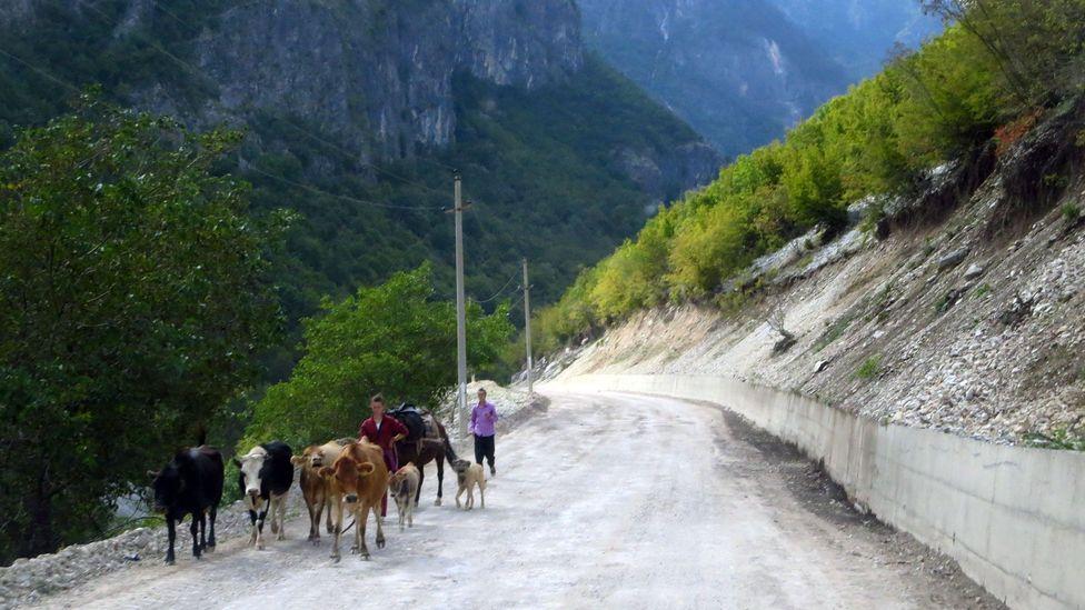 Trekking along unpaved roads. (Adam H Graham)