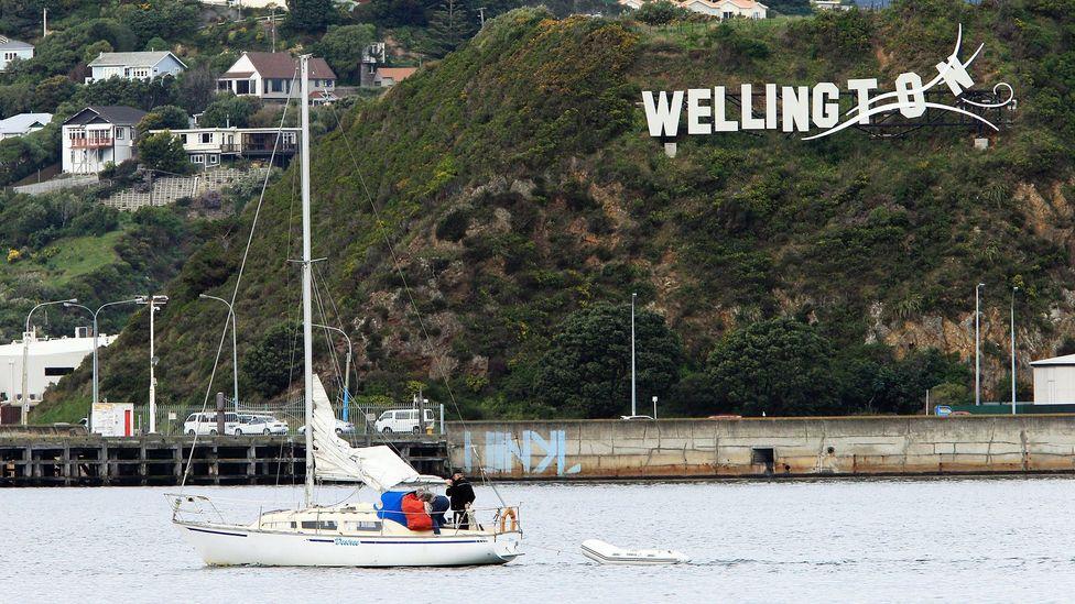 Calm waters off Wellington. (Hagen Hopkins/Getty)