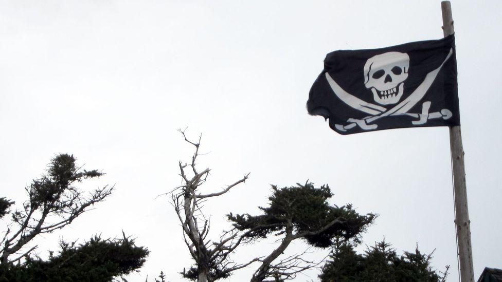 Flag flown by beachside resident in Cannon Beach. (Credit: David G Allan)