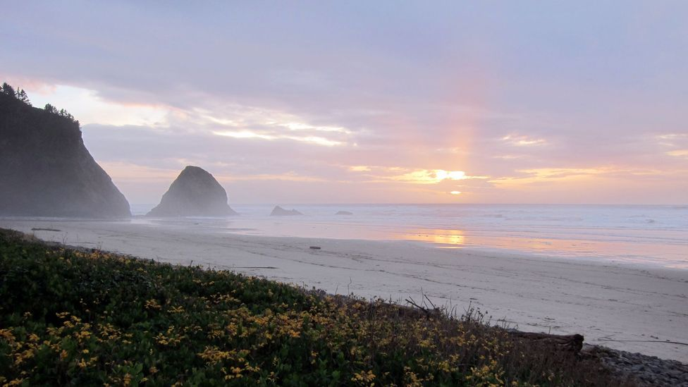 Sunset in Arch Cape, just south of Cannon Beach. (Credit: David G Allan)