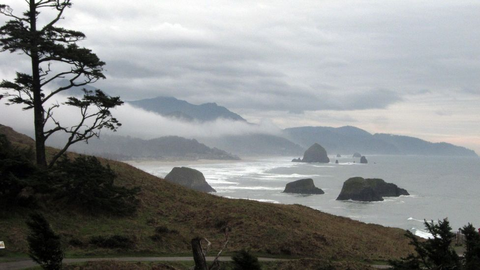 View of Cannon Beach from Ecola Point. (Credit: David G Allan)