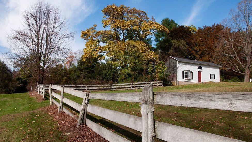 Barns among trees and farmland (Credit: Amanda Ruggeri)