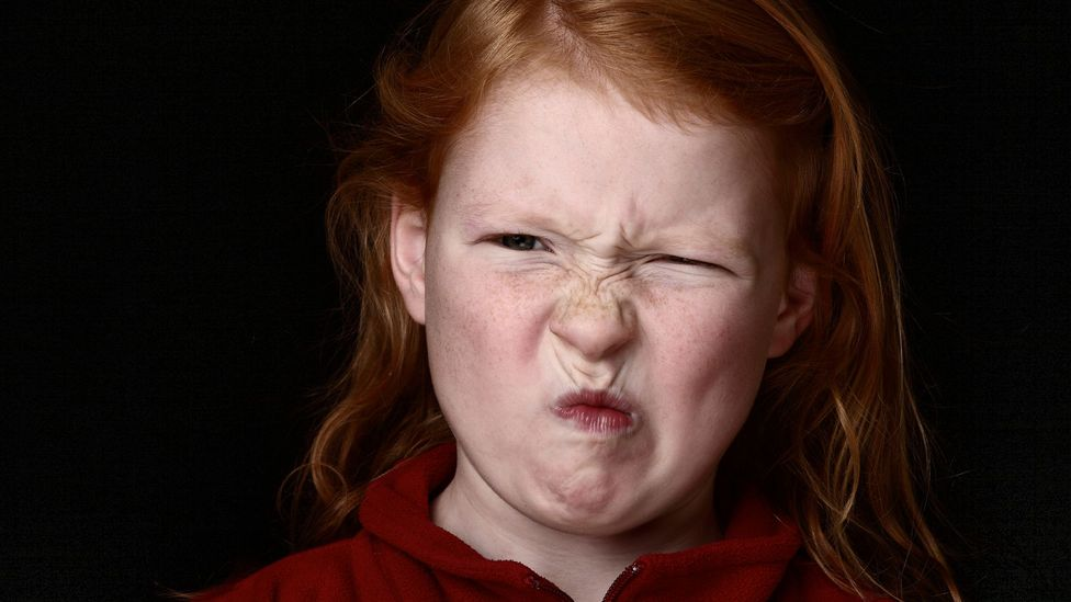 Studies have found that the politically conservative tend to be more easily disgusted (Credit: iStock)