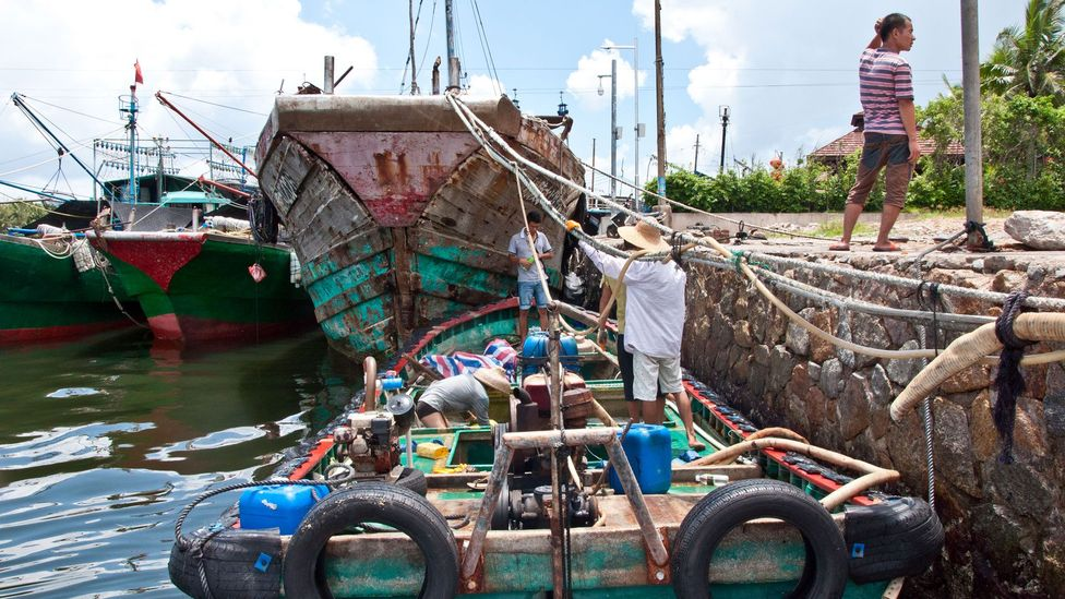 Fishermen, plying their trade (Credit: Amanda Ruggeri)