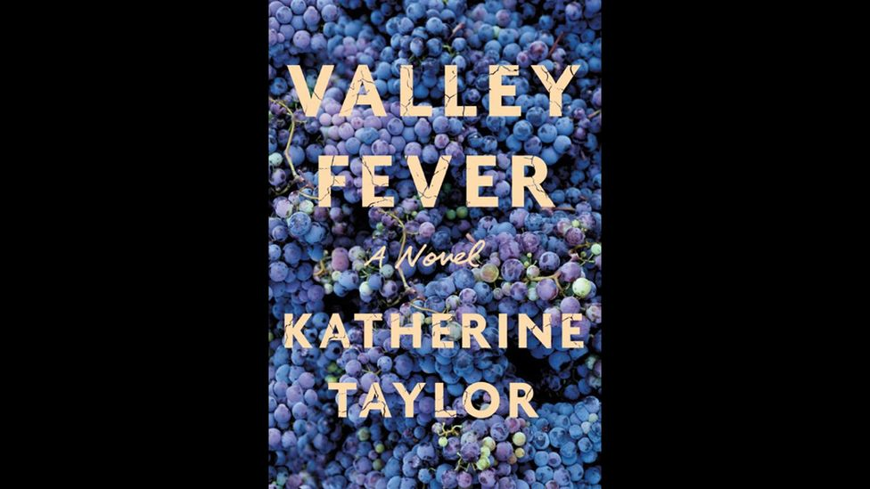 Katherine Taylor, Valley Fever