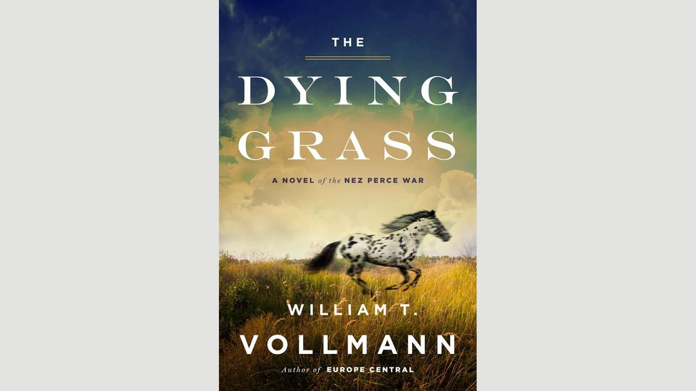 William T Vollmann, The Dying Grass
