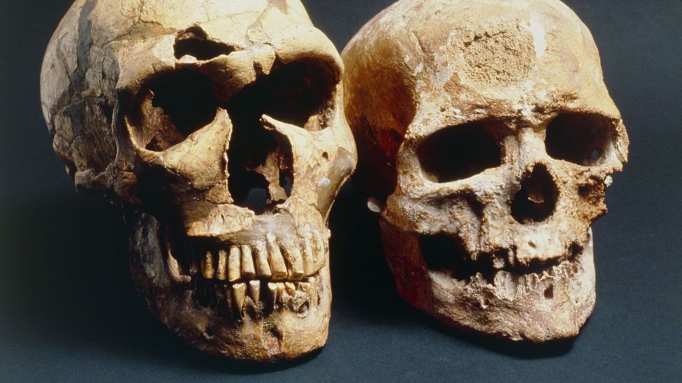 Neanderthals (left) didn't fare as well as we did (Credit: SPL)