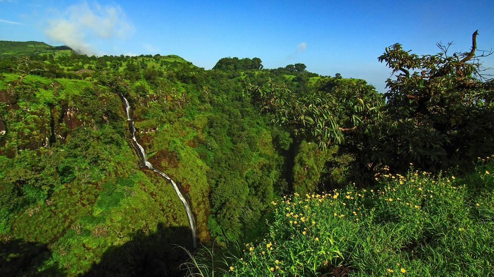 Clear skies on the cliffs of Sahyadris (Credit: Neelima Vallangi)