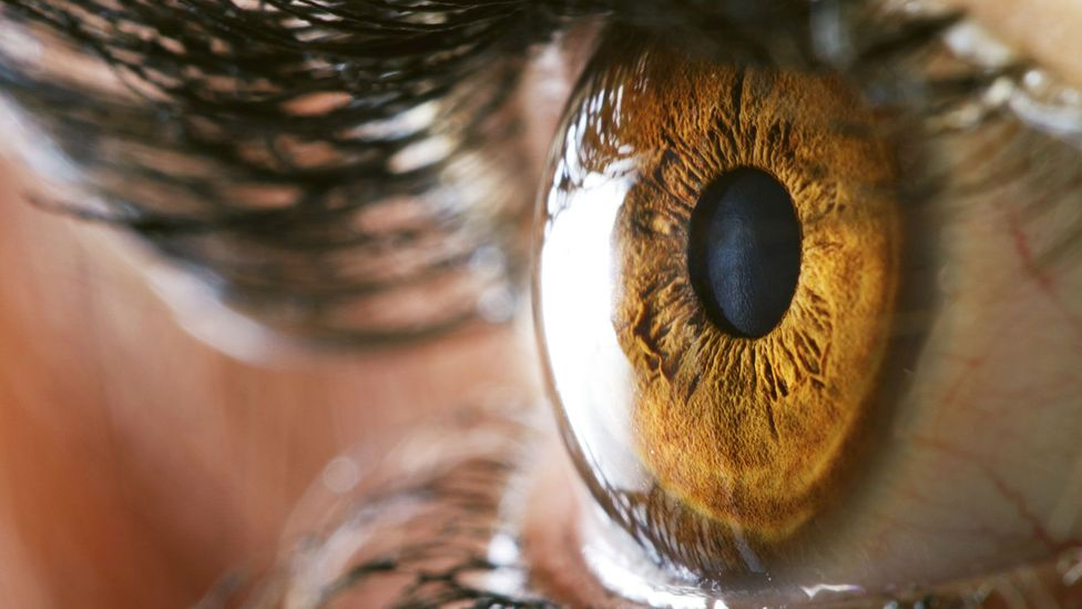 What are the limits of your vision? (Credit: Thinkstock)