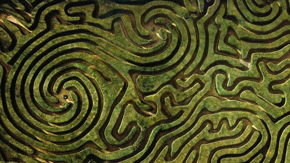 Adrian Fisher's hedge maze for the Longleat House in Wiltshire, England has 16,000 English yews and nearly 1.75 miles (2.8km) of paths (Credit: Adrian Fisher/Adrian Fisher Design)