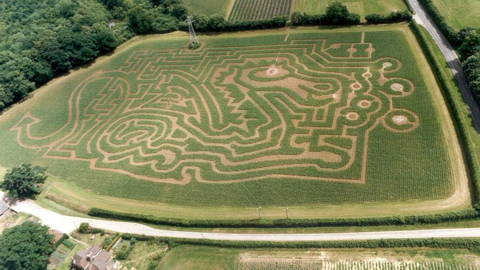 A dragon-shaped maize at Tulley's Farm in Sussex, England (Credit: Adrian Fisher/Adrian Fisher Design)
