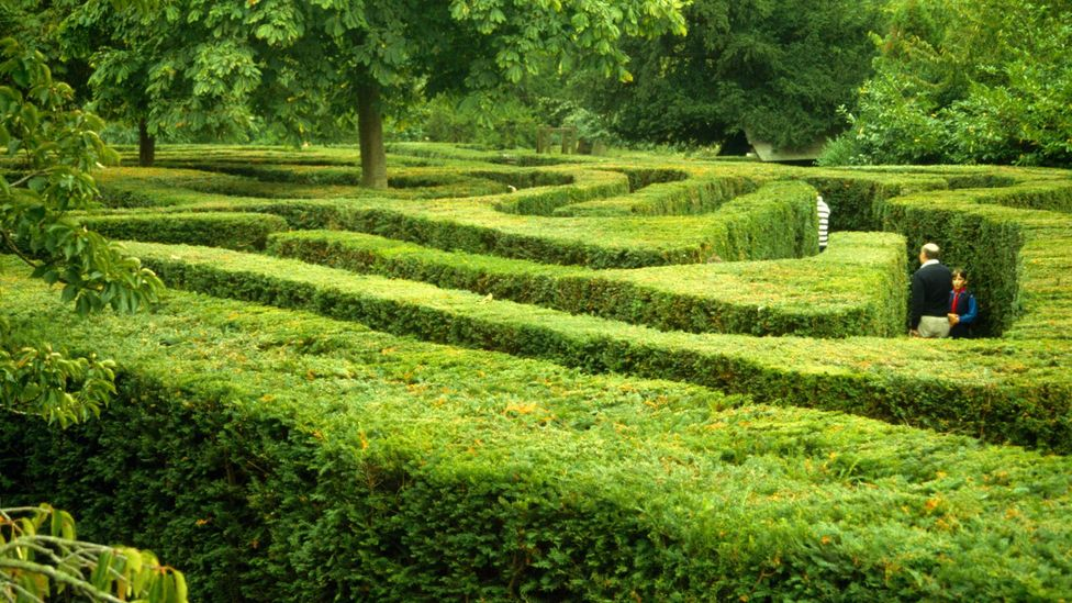 Visitors can still get lost in the Hampton Court hedge maze today (Credit: Art Directors & TRIP/Alamy)