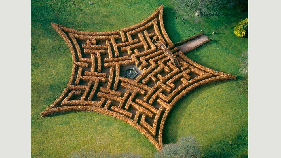 Fisher designed this maze for Scone Palace in Perthshire, Scotland in the shape of the Murray family crest, using 2,000 beech trees (Credit: Adrian Fisher/Adrian Fisher Design)