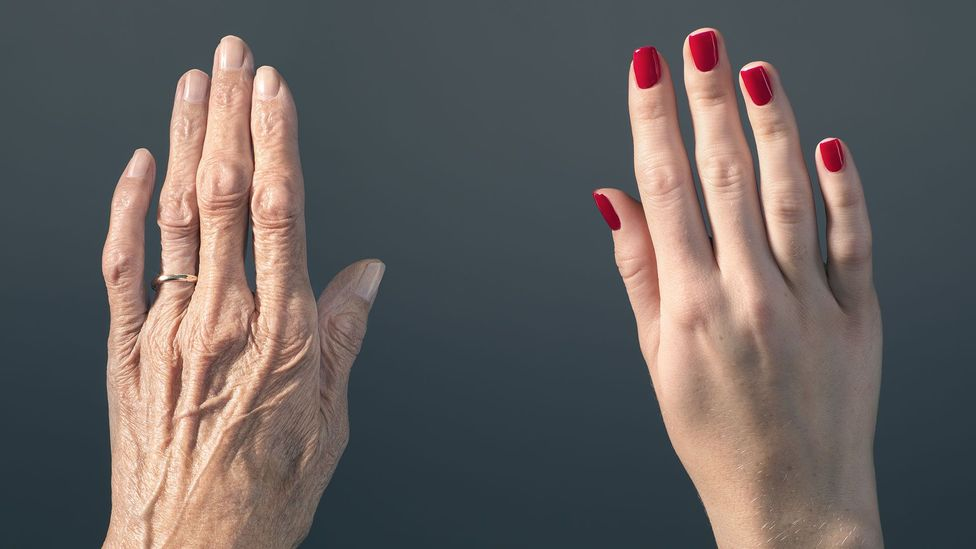 Ageing may arise from a gradual wear and tear to our genes and cells - but there could be ways to mop up the damage (Credit: Getty Images)