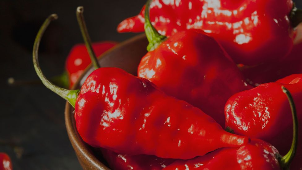 Hot chillis can trigger pleasurable responses... eventually (Credit: Thinkstock)