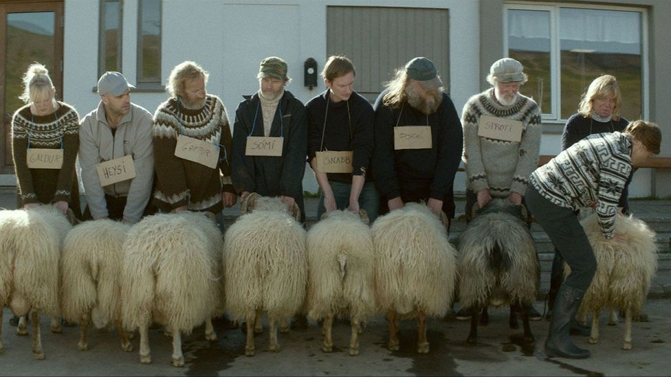 Rams is on course to become one of the most critically successful Nordic films ever – after winning the Un Certain Regard prize at Cannes (Credit: Cohen Media Group )