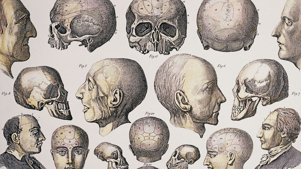 """Phrenology was once called the """"science of the mind"""" - we now know it has no basis in fact (Credit: SPL)"""