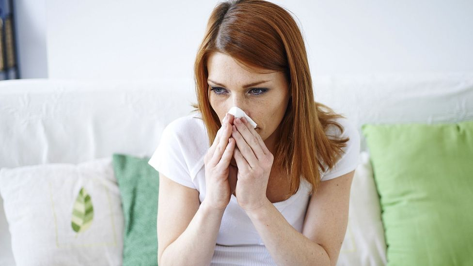 Those plagued by allergies could look forward to later years with less serious symptoms (Credit: Science Photo Library)