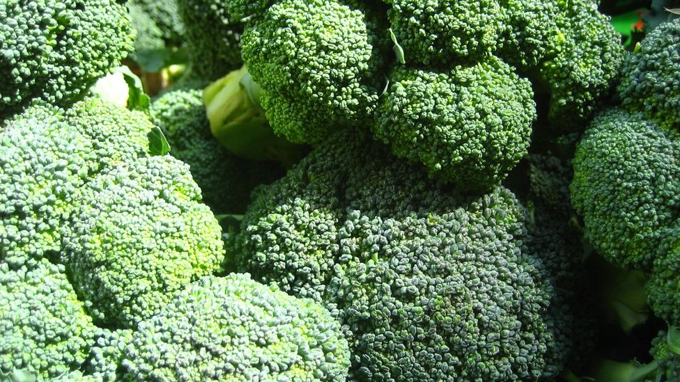 If you don't like broccoli, you can't necessarily train your brain to find it delicious (Credit: Jeremy Keith/Flickr/CC_BY_2.0)