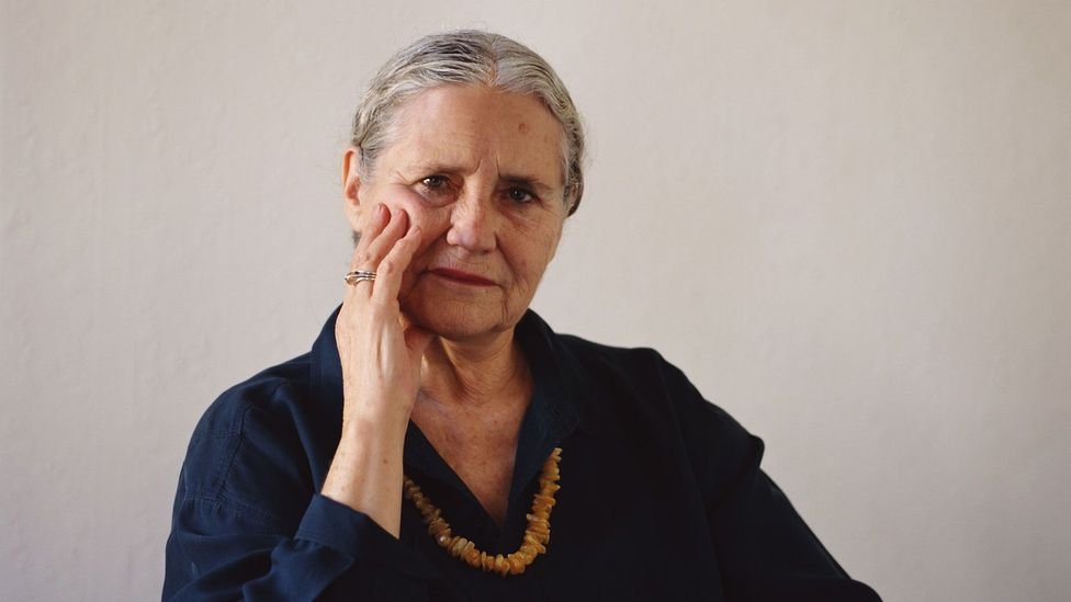 The range is broad – from period pieces and lesser-known books to feminist classics, like Doris Lessing's The Golden Notebook (Credit: David Levenson/Getty Images)