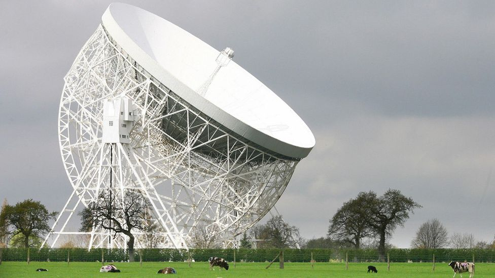 Jodrell Bank is a famous radio telescope in Britain which, among other things, has studied pulsars - rotating stars which emit a radio signal (Credit: Getty Images)