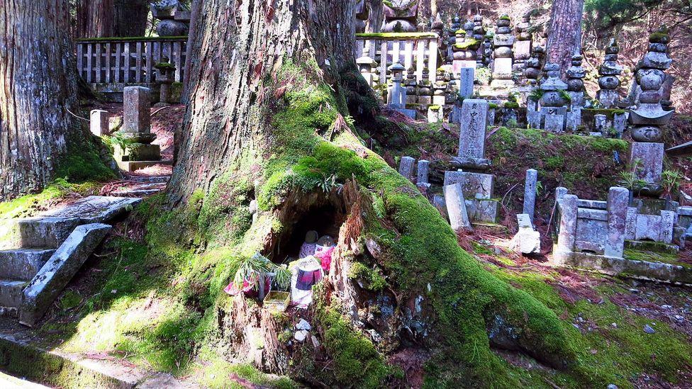 Okunoin is Japan's biggest cemetery at 2km long (Credit: Adam H. Graham)