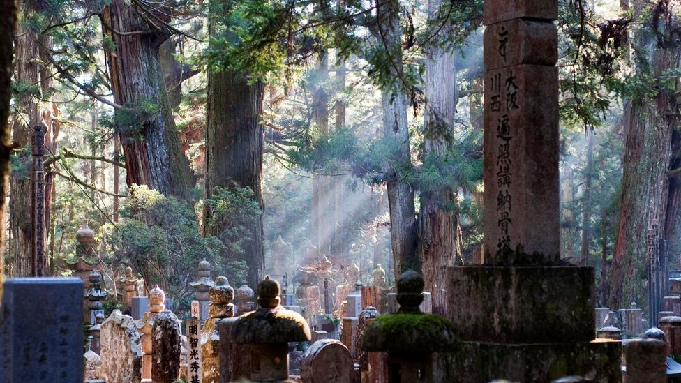 Okunoin Cemetery is deep in an ancient forest (Credit: alq666/Flickr/CC BY-SA 2.0)