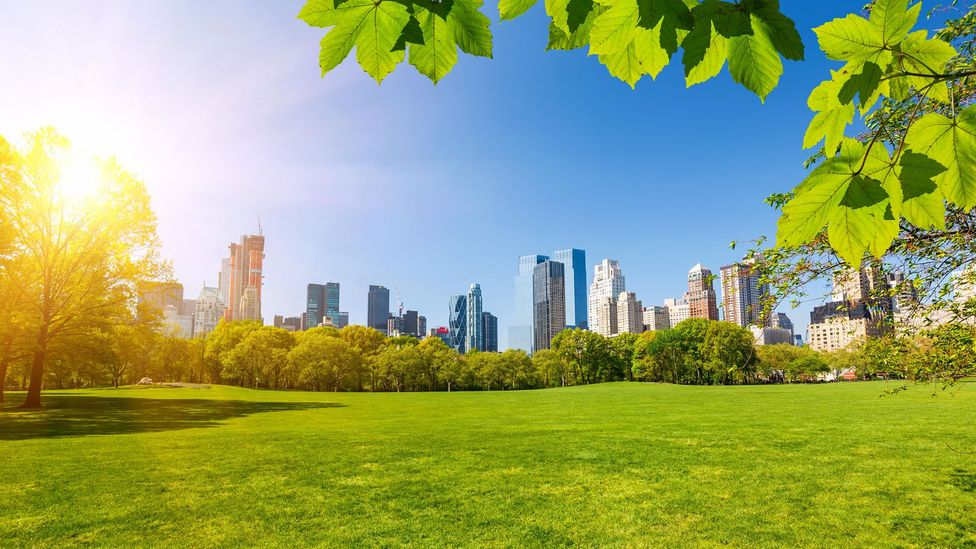Even something as simple as a walk in a park on a sunny day can help combat jet lag (Credit: Alamy)