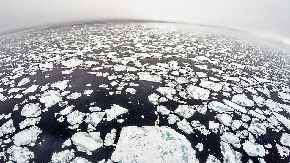 A drone photo shows just how far into the pack ice the Barba – pictured in the lower centre – sailed. (Credit: Daniel Hug)