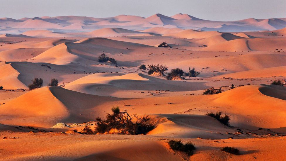 Desert sand is too smooth to be used in construction (Credit: Alamy)