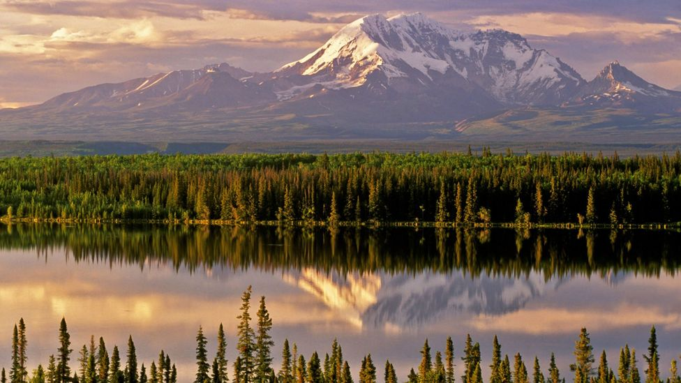 Wrangell St-Elias was officially designated a national park in 1980 (Credit: Calvin W Hall/Alamy)