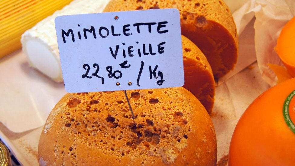 Tiny mites infest Mimolette cheese, which helps develop its flavour (Credit: age fotostock/Alamy)