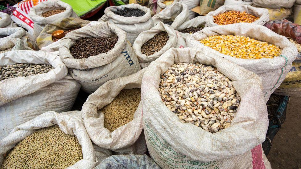 It's common in Venezuela to eat grains, like lentils, with sugar (Credit: Bernard Golden/Alamy)