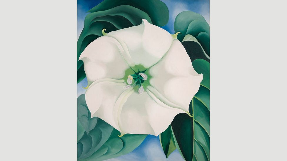 Jimson Weed/White Flower No 1 1932 fetched the highest price ever for a work by a female artist in 2014 (Credit: 2016 Georgia O'Keeffe Museum/DACS, London)