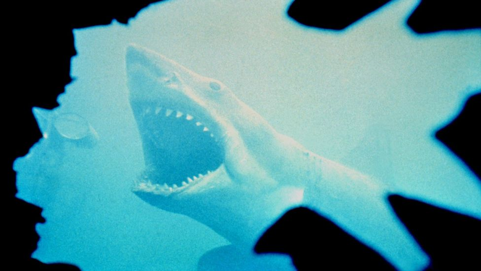 Michael Capuzzo told the true story of Jaws in his non-fiction bestseller, Close to Shore (Credit: Alamy)