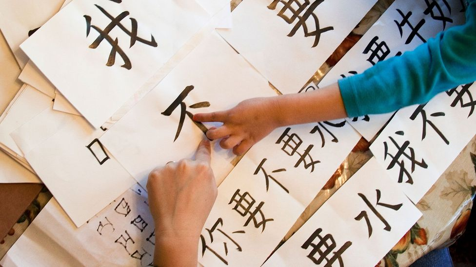 Immersing children in a second language may help benefit their performance in all subjects (Credit: Getty Images)