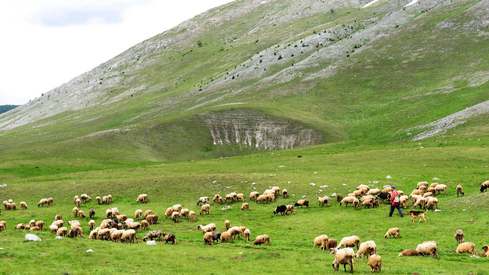 The landscapes of the Dinaric Alps are dramatic and gorgeous (Credit: Boaz Rottem / Alamy)