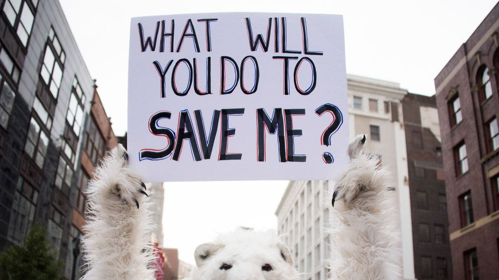 Views on climate change tend to be influenced by political ideologies, regardless of scientific education (Credit: Getty Images)