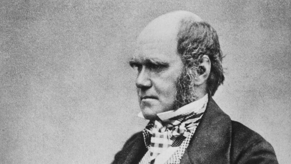 Charles Darwin fits the perception of bald men as intelligent, high-status and influential (Credit: Wikimedia Commons)