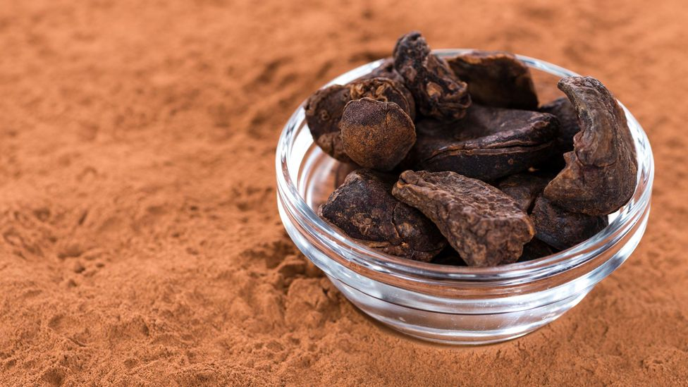 The kola nut was prized by West Africans long before Europeans encountered it (Credit: iStock)