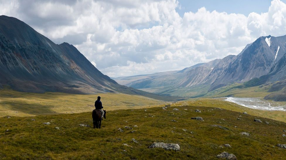 The New Zealand scientists have travelled as far afield as the Altai Mountains in Russia (Credit: iStock)