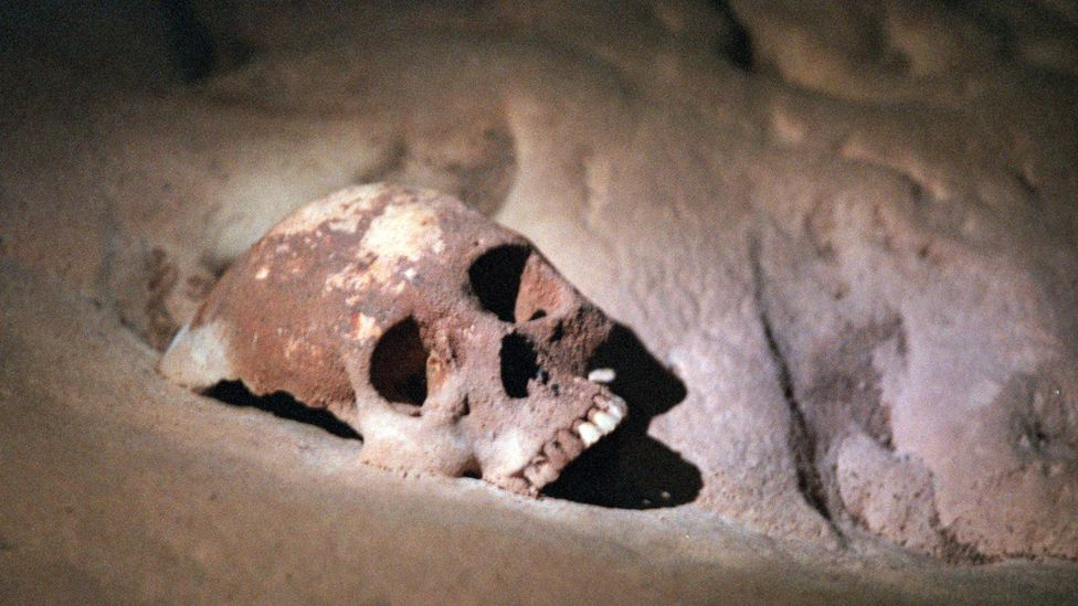The skulls found in Belize could offer clues on the Mayan disappearance (Credit: Steve Russell/Getty)