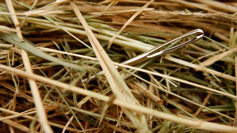 Finding out exactly where in the past a proverb emerged is a tough task, akin to looking for a needle not just in a haystack, but in the entire farmland (Credit: Alamy)